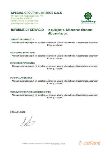 INFORME DE SERVICIO1
